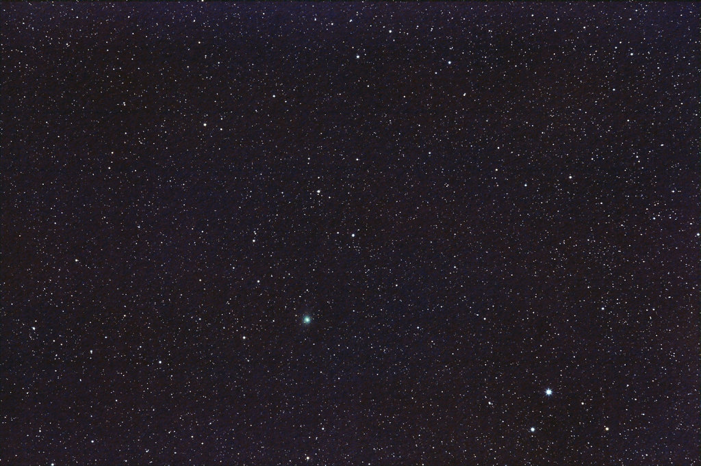 Comet C/2014 Q2 Lovejoy Near Polar Star