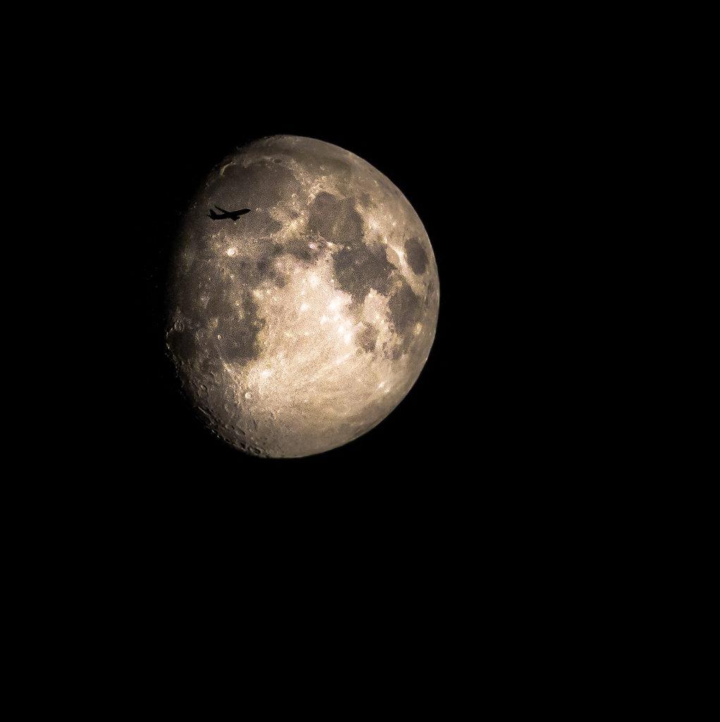 astro-kryptophoto-8548.jpg
